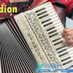 Accordion Loops — коллекция звуков аккордеона