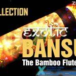 Exotic Bansuri — Сэмплы индийской флейты