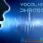 Vocal hits & phrases — Сэмплы голоса