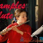 Flute Samples — Сэмплы флейты в формате wav