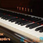 Piano Samples — Коллекция сэмплов пианино