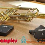 Trumpet Samples — Сэмплы медной трубы в формате wav