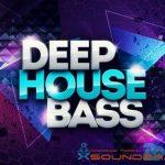 Deep House Bass — Басовые лупы для Дип-хауса