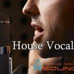 House Vocal Effects — Голосовые эффекты для создания хаус музыки