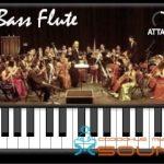 Iowa Bass Flute — Сэмплированный VSTi плагин бас-флейты (X32, X64, MAC OSX)