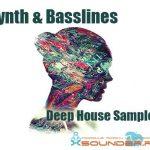Deep House Synth & Basslines — Синтезированные сэмплы для дип-хауса