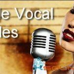 Female Vocal Samples — Мелодичные вокальные сэмплы женского голоса