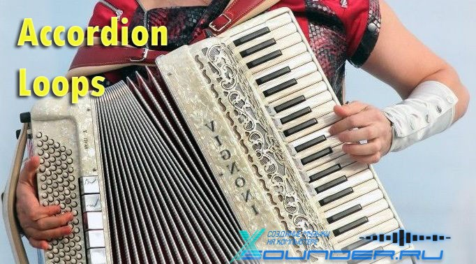 Accordion сэмплы