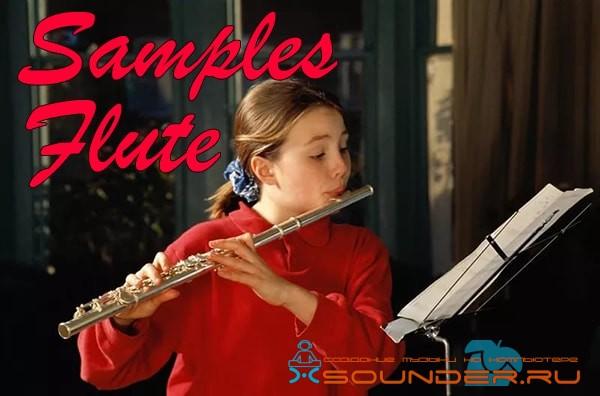 Flute samples - сэмплы флейты