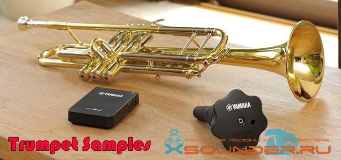 Trumpet samples - сэмплы духовой медной трубы