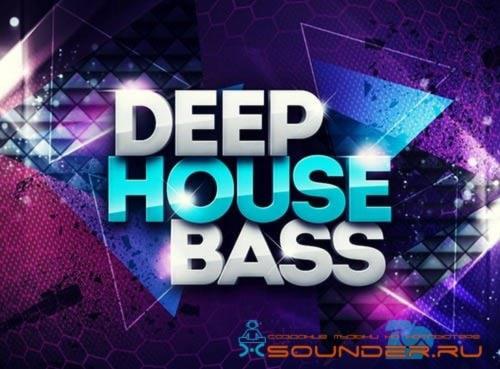 deep house bass сэмплы баса