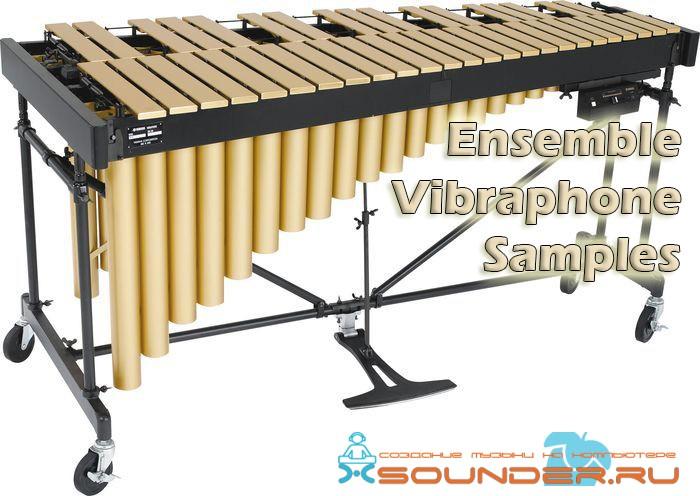 Ensemble Vibraphone Samples сэмплы вибрафона