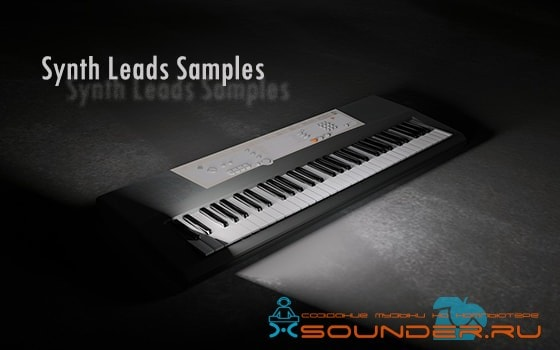 Synth Leads Samples сэмплы лиды