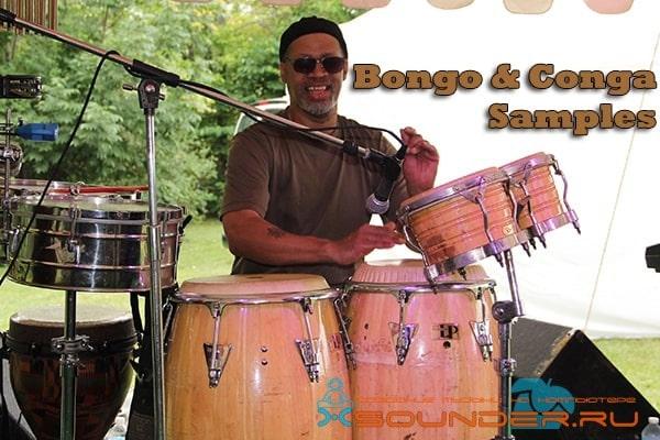 Bongo Conga сэмплы