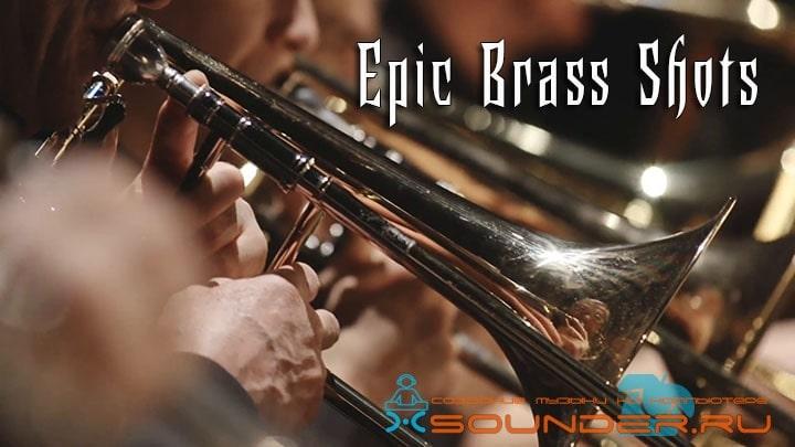 brass instruments symphony orchestra